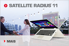 Satellite Radius 11